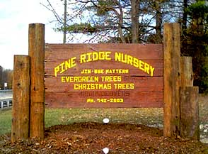 Lafayette Indiana Christmas Trees matterns pine ridge nursery sign