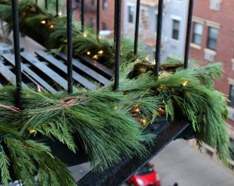 winter white pine roping